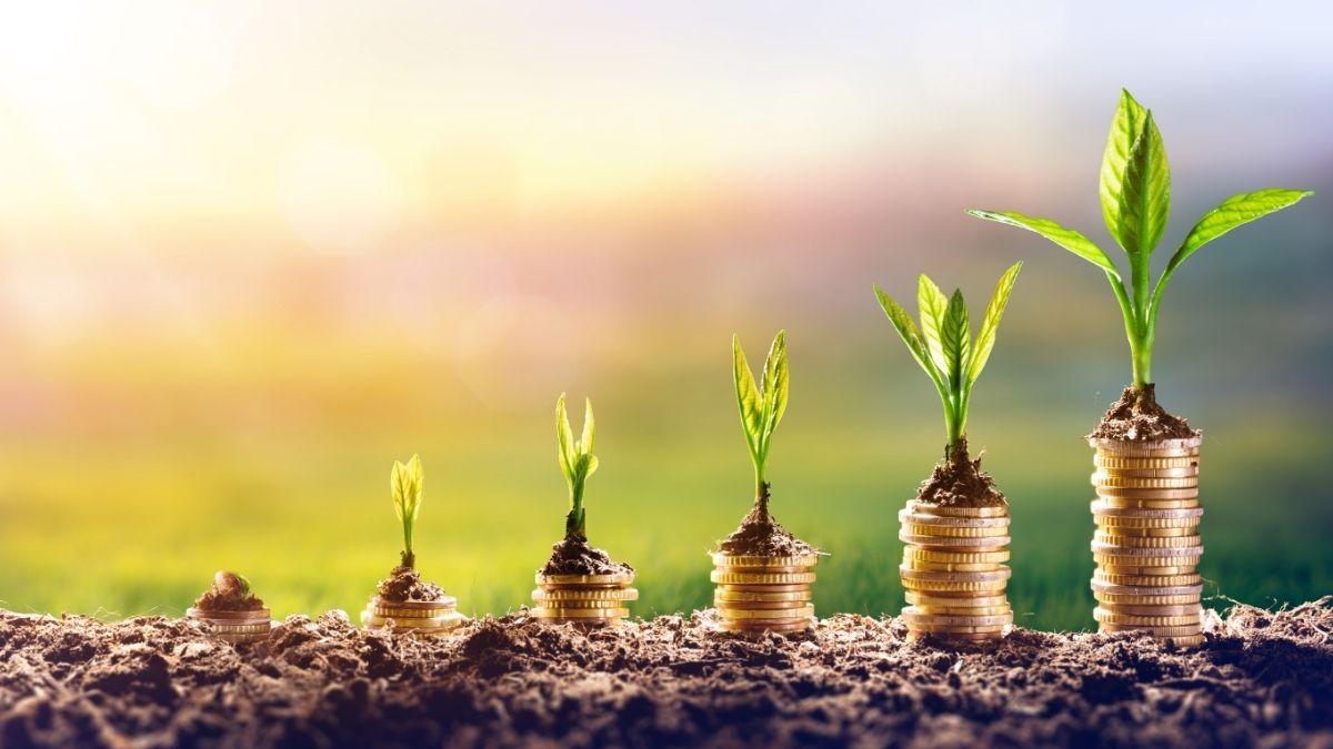 Nifty Next 50 Index Fund